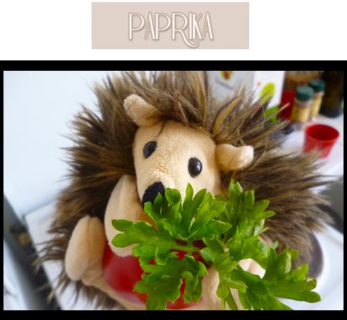 Paprika le hérisson ébouriffé, les entrées, c'est sa spécialité.
