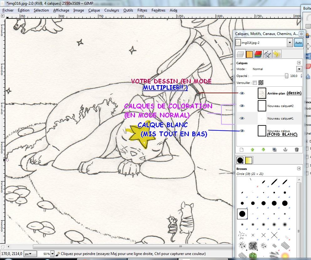 [Tutoriel] Bases de la coloration sur Gimp/Photofiltre (par Showel) 1344791747015702700