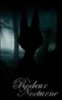 Rôdeur Nocturne
