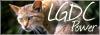 Le roi Lion - Portail 1311201432053350500